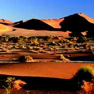 Safari holidays and fly-drive holidays to Namibia